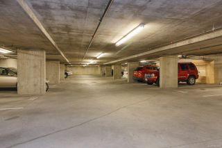 Photo 31: 505 827 Fairfield Rd in Victoria: Vi Downtown Condo for sale : MLS®# 884957