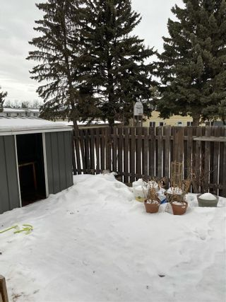 Photo 16: 28 RIDGEWOOD Terrace: St. Albert Townhouse for sale : MLS®# E4225750