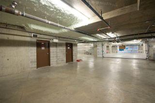 """Photo 18: 303 8183 121A Street in Surrey: Queen Mary Park Surrey Condo for sale in """"Celeste"""" : MLS®# R2383438"""