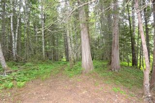 Photo 37: DL 1335A 37 Highway: Kitwanga Land for sale (Smithers And Area (Zone 54))  : MLS®# R2471833