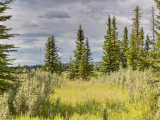 Photo 9: 7 34364 RANGE ROAD 42: Rural Mountain View County Land for sale : MLS®# A1017817