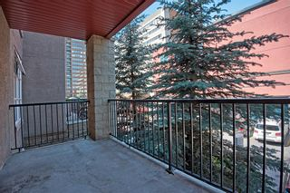 Photo 20: 201 315 24 Avenue SW in Calgary: Mission Apartment for sale : MLS®# A1062504