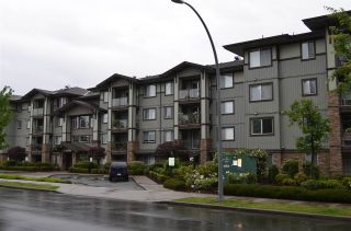 "Photo 1: 311 2038 SANDALWOOD Crescent in Abbotsford: Central Abbotsford Condo for sale in ""The Element on Sandalwood"" : MLS®# R2079570"