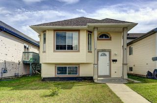 Photo 30: 243 TARACOVE ESTATE Drive NE in Calgary: Taradale Detached for sale : MLS®# C4303627