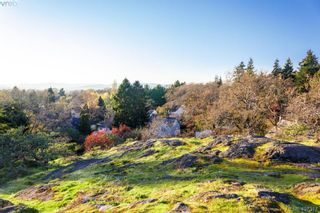 Photo 15: 1464 Bromley Pl in VICTORIA: SE Cedar Hill Land for sale (Saanich East)  : MLS®# 809481