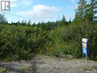 Photo 1: 32 SALMONIER Line in HOLYROOD: Retail for sale : MLS®# 1199716