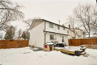 Photo 13: 1048 Edderton Avenue in Winnipeg: West Fort Garry Residential for sale (1Jw)  : MLS®# 1730994