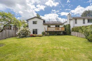 Photo 7: 21355 THORNTON Avenue in Maple Ridge: West Central House for sale : MLS®# R2585991
