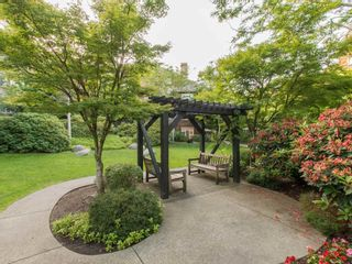 """Photo 19: 245 15 SIXTH Avenue in New Westminster: GlenBrooke North Townhouse for sale in """"CROFTON"""" : MLS®# R2074537"""