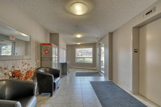 Photo 7: 107 380 Marina Drive: Chestermere Apartment for sale : MLS®# A1028134