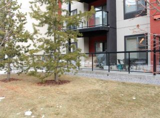 Photo 20: 144 308 AMBLESIDE Link in Edmonton: Zone 56 Condo for sale : MLS®# E4224346