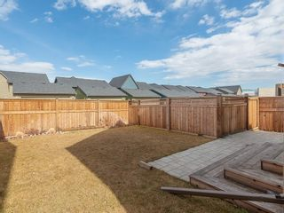 Photo 35: 46 WALDEN Court SE in Calgary: Walden Detached for sale : MLS®# C4238611