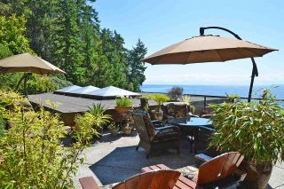 Photo 16: 11579 SUNSHINE COAST Highway in Halfmoon Bay: Halfmn Bay Secret Cv Redroofs House for sale (Sunshine Coast)  : MLS®# R2513028