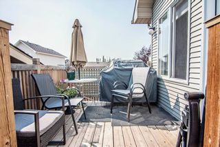 Photo 31: 259 CRANBERRY Place SE in Calgary: Cranston Detached for sale : MLS®# C4214402
