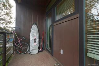 Photo 16: 205 982 McKenzie Ave in VICTORIA: SE Quadra Condo for sale (Saanich East)  : MLS®# 830856