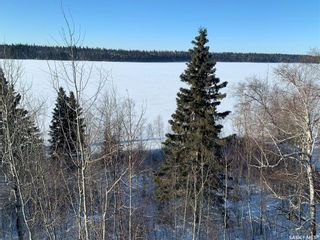 Photo 48: 20 Sunset Cove in Cowan Lake: Residential for sale : MLS®# SK841498