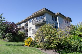 Photo 21: 211 2125 W 2ND Avenue in Vancouver: Kitsilano Condo for sale (Vancouver West)  : MLS®# V971521