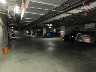 Photo 28: 312 4700 43 Avenue: Stony Plain Condo for sale : MLS®# E4256422