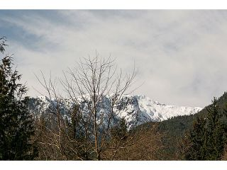 """Photo 16: 41550 GOVERNMENT Road in Squamish: Brackendale House for sale in """"BRACKENDALE"""" : MLS®# V1051640"""