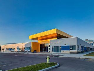 Photo 48: 69 Silverado Skies Crescent SW in Calgary: Silverado Detached for sale : MLS®# A1127831