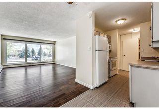 Photo 8: 118 816 89 Avenue SW in Calgary: Haysboro Apartment for sale : MLS®# A1059507