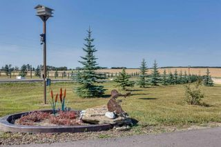 Photo 5: 28125 Highway 587: Rural Red Deer County Detached for sale : MLS®# A1141003