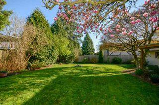 Photo 31: 8462 154 Street in Surrey: Fleetwood Tynehead House for sale : MLS®# R2566841