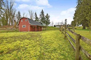 Photo 3: 33480 DOWNES Road in Abbotsford: Central Abbotsford House for sale : MLS®# R2457586