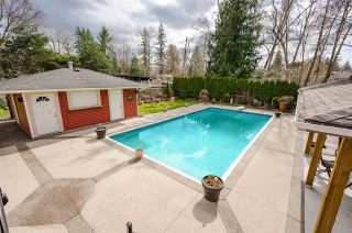 """Photo 32: 4537 SADDLEHORN Crescent in Langley: Salmon River House for sale in """"Salmon River"""" : MLS®# R2553970"""
