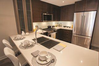Photo 9: 206 6168 LONDON ROAD: Steveston South Home for sale ()  : MLS®# R2065203