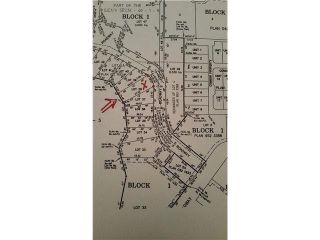 Photo 2: 114 HERON POINT Close: Rural Wetaskiwin County Rural Land/Vacant Lot for sale : MLS®# E4242538