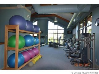 Photo 5: 425 Longspoon Place, in Vernon: Vacant Land for sale : MLS®# 10201492