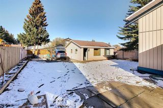 Photo 25: 348 TEMPLETON Circle NE in Calgary: Temple Detached for sale : MLS®# A1090566