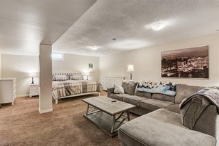 Photo 28: 10219 MAPLE BROOK Place SE in Calgary: Maple Ridge Detached for sale : MLS®# C4304932