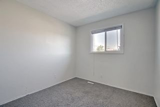 Photo 30: 55 6020 Temple Drive NE in Calgary: Temple Row/Townhouse for sale : MLS®# A1140394