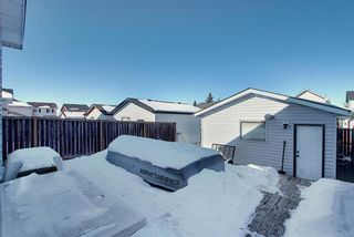 Photo 23: 70 Martinbrook Link NE in Calgary: Martindale Residential for sale : MLS®# A1071683