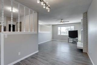 Photo 11: 3812 49 Street NE in Calgary: Whitehorn Detached for sale : MLS®# A1054455