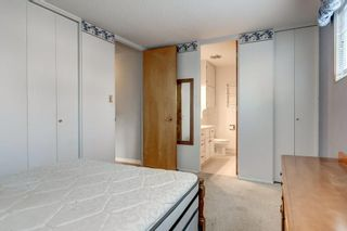 Photo 28: 3432 LANE CR SW in Calgary: Lakeview House for sale : MLS®# C4279817