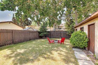 Photo 45:  in Edmonton: Zone 35 House for sale : MLS®# E4254409