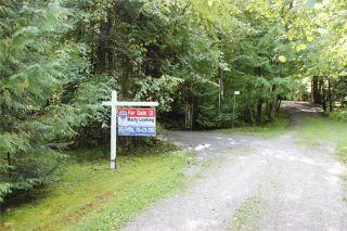 Photo 8: 6 Cardinal Drive in Kawartha Lakes: Rural Eldon House (Backsplit 3) for sale : MLS®# X3609146