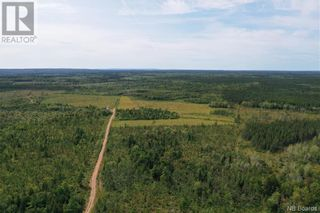 Photo 16: 550 Cookville Road in Out of Board: Agriculture for sale : MLS®# NB050249