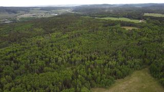Photo 7: 336 Street: Rural Foothills County Residential Land for sale : MLS®# A1151202