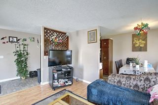 Photo 7: 217 Templemont Drive NE in Calgary: Temple Semi Detached for sale : MLS®# A1120693