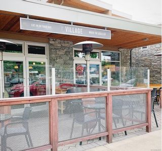Photo 1: 355 Cook St in : Vi Fairfield East Business for sale (Victoria)  : MLS®# 863831