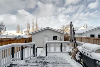 Photo 38: 66 Hidden Spring Green NW in Calgary: Hidden Valley Detached for sale : MLS®# A1067041