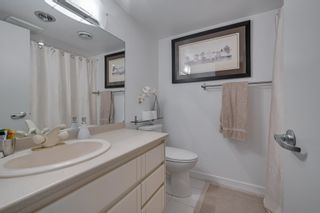 Photo 36:  in Edmonton: Zone 10 House for sale : MLS®# E4260224