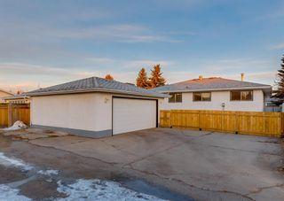 Photo 46: 11039 166 Avenue: Edmonton Detached for sale : MLS®# A1083224