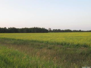 Photo 2: Tobin Lake Acreage Plot ( 5 Acres) in Moose Range: Lot/Land for sale (Moose Range Rm No. 486)  : MLS®# SK839734