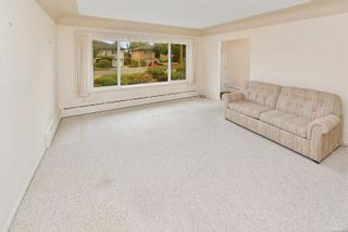 Photo 14: 1960 CARNARVON St in : SE Camosun House for sale (Saanich East)  : MLS®# 884485