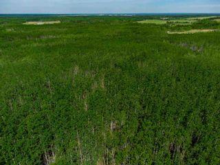 Photo 3: TWP 624 Rge Rd 423: Rural Bonnyville M.D. Rural Land/Vacant Lot for sale : MLS®# E4227702